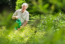 Yard Work Heading Image